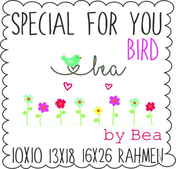 SPECIAL FOR YOU - Bird