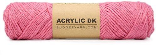 BUDGETYARN - Acrylic DK - 048