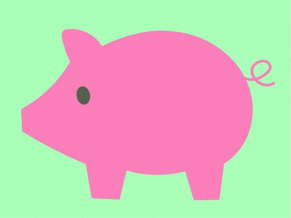 Postkarte - Schweinchen