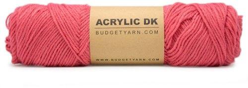 BUDGETYARN - Acrylic DK - 040