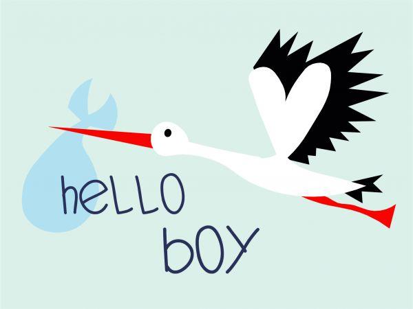Postkarte - Hello Boy